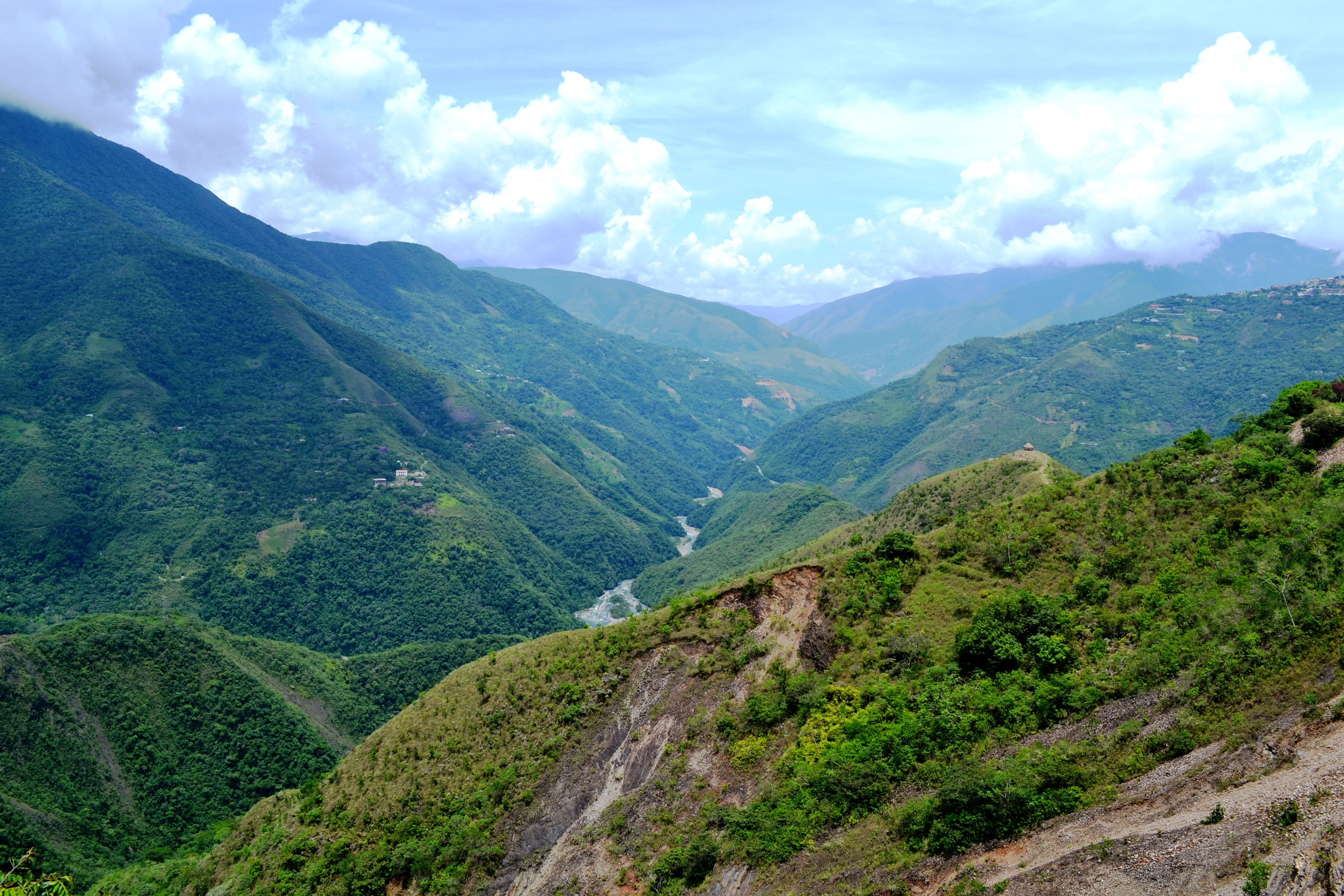 The Amazon Valley